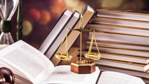 profesional judicial experto en informes